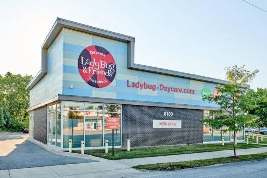 ladybug_lj9